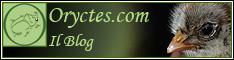 [IMG]http://www.oryctes.com/intro_file/oryctesblogbp1.jpg[/IMG]